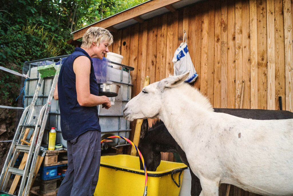 Bettina Mutschler, Therapie mit Esel