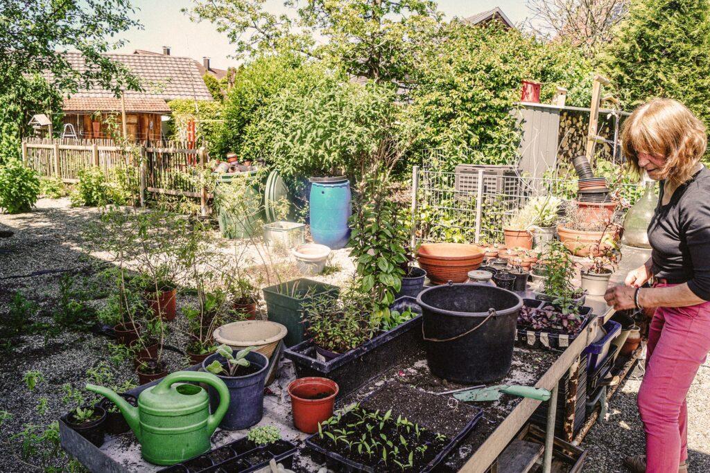 Gabrieles Garten, vegane Selbstversorgung