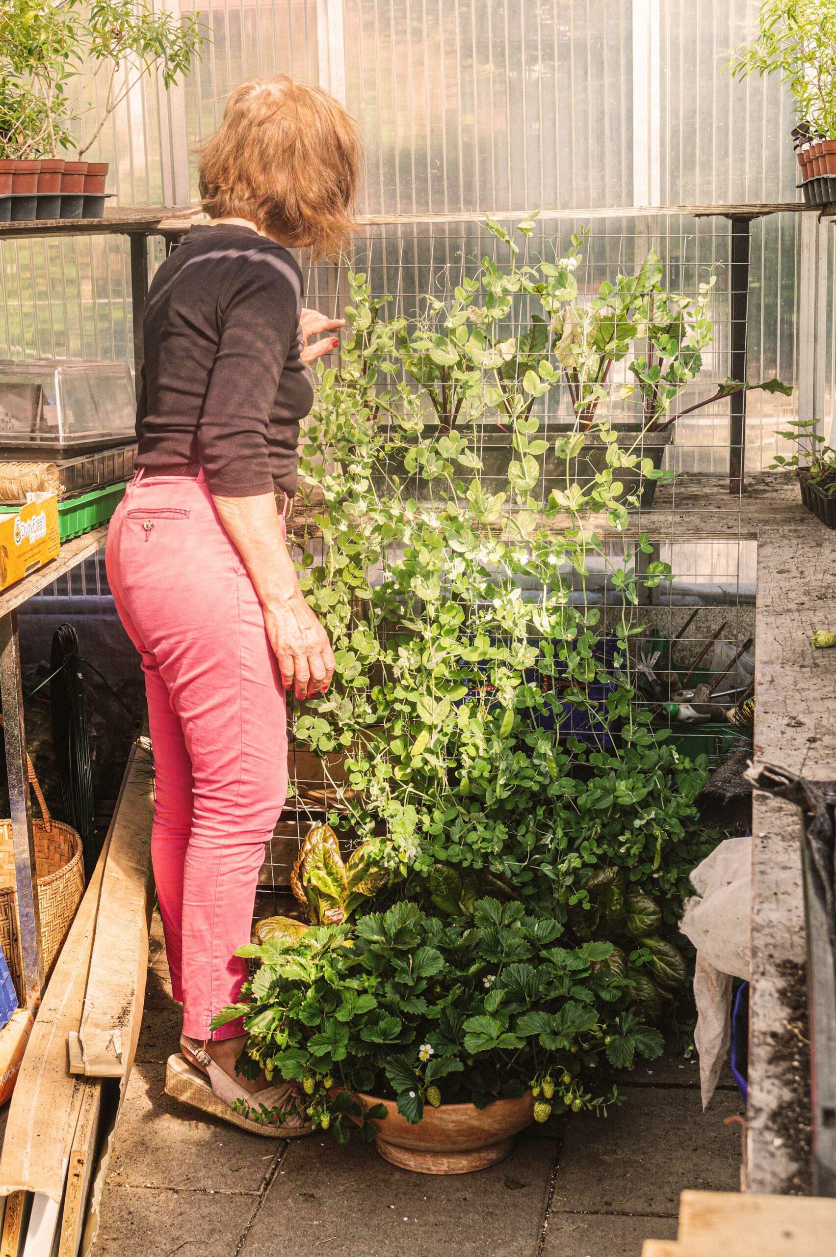 Gabriele Stoll zeigt einen vertikalen Gemüseanbau